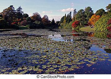秋, 光景, 湖, 木, 反射
