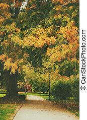 秋, 公園, ∥で∥, アリー
