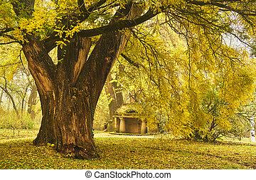 秋, 公園