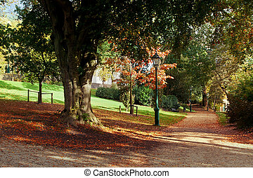 秋, 公園, 現場