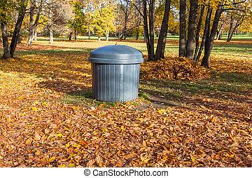 秋, 公園, 缶, ごみ