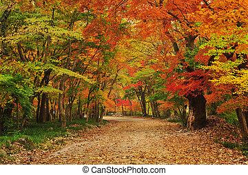 秋, 南朝鮮, 寺院, 風景