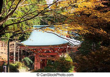 秋, 台湾, 滝