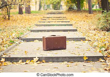 秋, 型, 公園, アリー, スーツケース