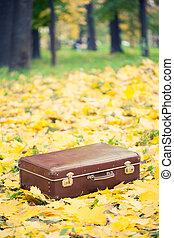 秋, 型, 公園, スーツケース