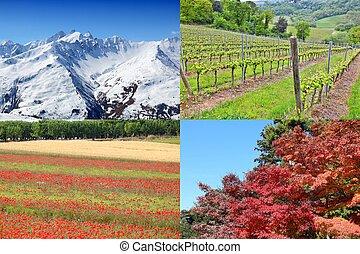秋, 夏, 冬, 春