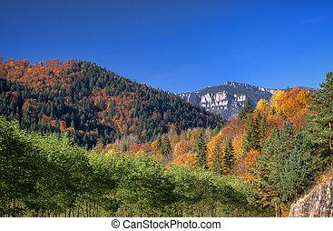 秋, 山の景色