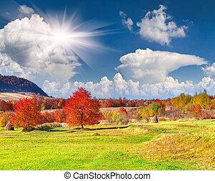 秋, 山, 風景, カラフルである