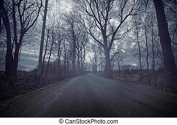 秋, 憂うつである, durring, 寒い, 日, 道