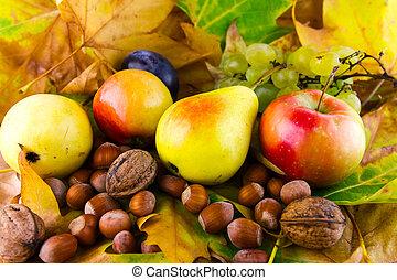 秋, 成果, 上に, 葉