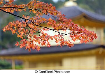秋, 日本語