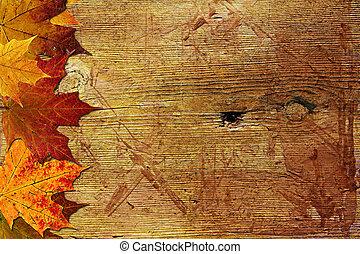 秋, 木製である, 背景, かえで