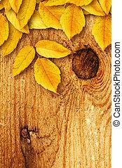 秋, 木製である, 葉, 背景