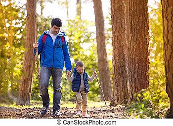 秋, 歩くこと, 父, 森林, 息子