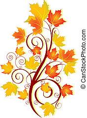 秋, 渦巻