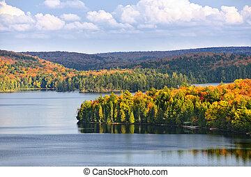 秋, 湖の 森林