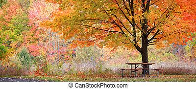秋, 現場, 弛緩