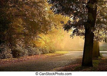 秋, 田園, 景色, 道