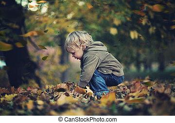 秋, 男の子, わずかしか, 葉