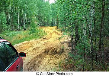 秋, 自動車, 旅行, 野生, 森林