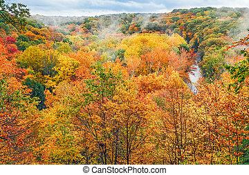 秋, 見晴らし場