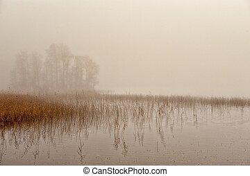 秋, 霧が深い, スカンジナビア, 朝
