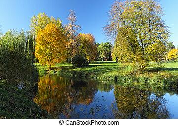 秋, 黄色, 木, そして, 川