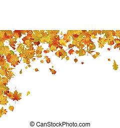 秋, 8, leaves., 背景, eps