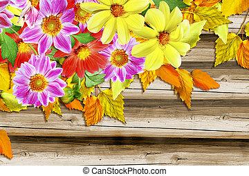 秋, foliage., ダリア, flowers;