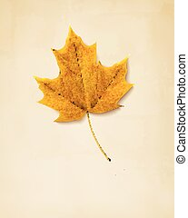 秋, leaf., 背景, 黄色, vector.