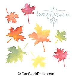 秋, leaves., 水彩画, イミテーション, vector., かえで