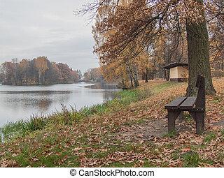 秋, park.