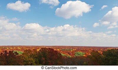 秋, timelapse, ループ, skyscape