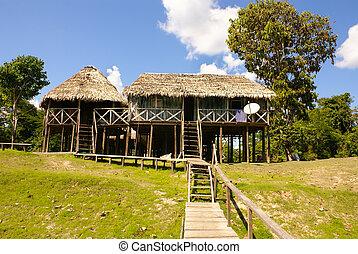 秘魯, 秘魯人, amazonas, 風景。, the, 相片, 禮物, 典型, 印第安語, 部落, 解決, 在, 悍蟻