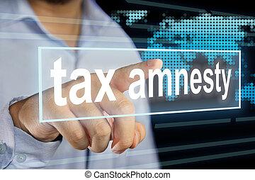 税, amnesty, 概念, 問題