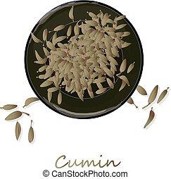 種, 調味料, (zira), 食事, cumin, イラスト, スープ, ベクトル, 背景, 白