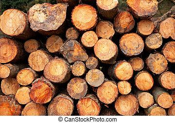 積み重ねられた, 木材を伐採する