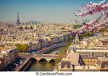 空中写真, の, パリ