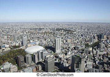 空中写真, の, 東京, ドーム, 都市, 区域