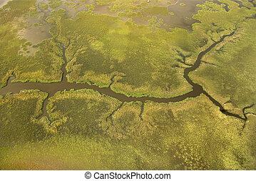空中写真, の, tributary.