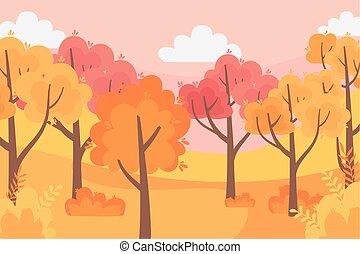 空, 森林, 木, 秋, 自然, 葉, パノラマ, 現場