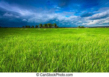 空, 牧草地, 嵐である