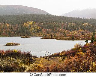 空, 荒野, 湖, 營房, 在, 秋天, 育空河, 加拿大