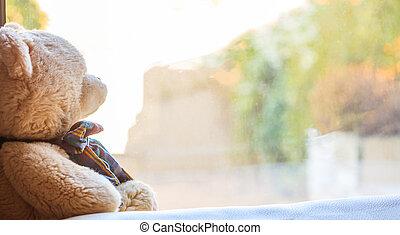 窓の下枠, 熊, テディ