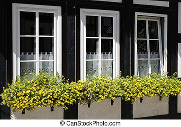 窓, ∥で∥, 花, 箱