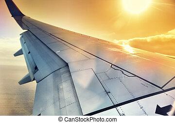窓, によって, 翼, 飛行機, 光景