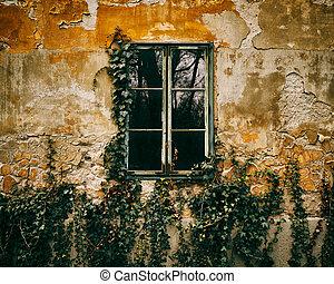 窓, 古い, ツタ, 背景