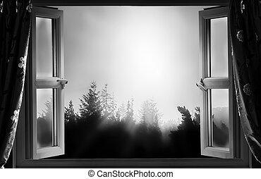 窓, bw, 開いた, 夜