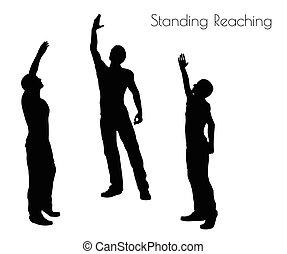 站立, 到達, 姿態, 背景, 白色, 人