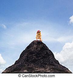 站立, 山, 成功, 頂部, 領導人, 年輕, 船, , 頂峰, 嬰孩 小雞, 摘要, 孩子